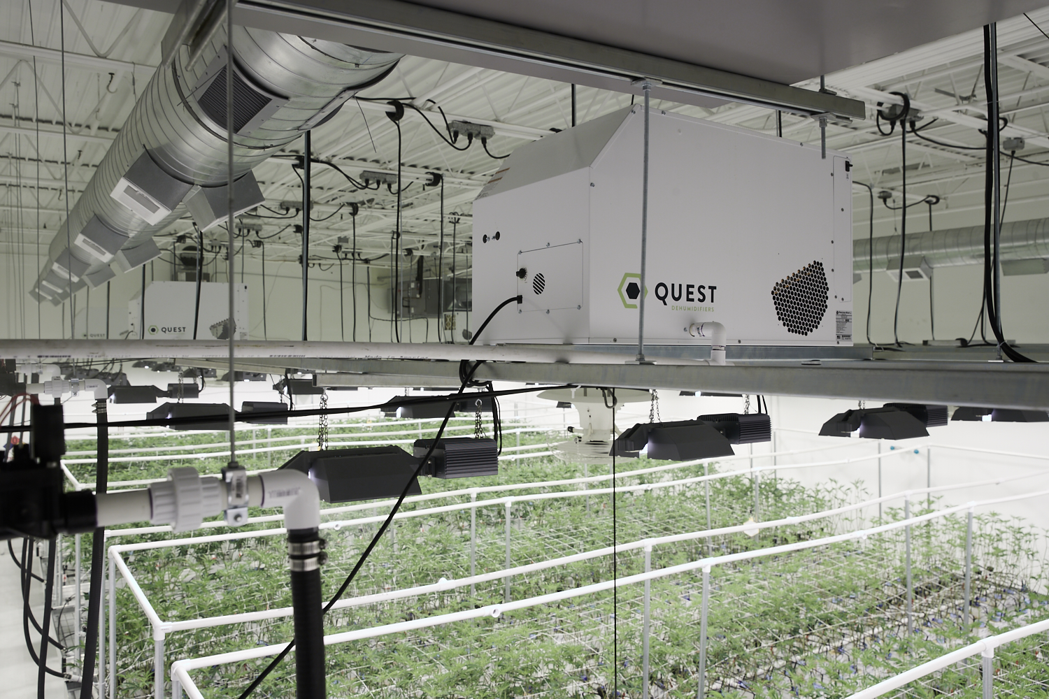 Reduce Expenses by Commissioning Your Cultivation Facility